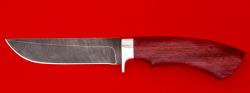 Охотничий нож Грибник-2, клинок дамасская сталь, рукоять амарант